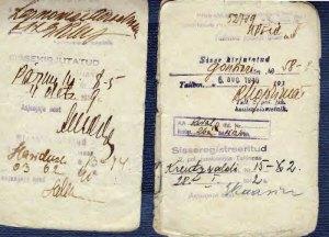 Albert-Vaart-Internal-Passport_Page_6-web