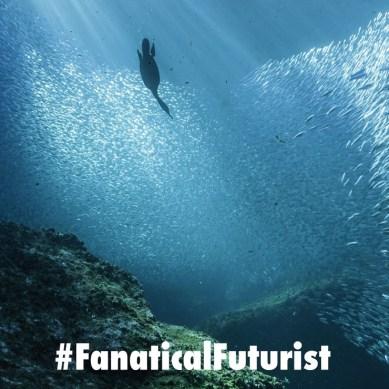 US military genetics program to turn marine life into giant living sensor networks