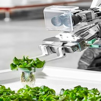 A US start up has created the world's first fully autonomous vertical farm