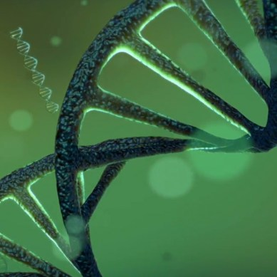 Researchers unveil the world's first programable DNA computer prototype