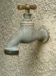 L'eau du robiney