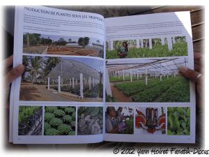 """Les serres de production """"Le nouveau guide des plantes Dennerle"""""""