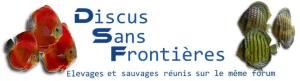 Le Forum Discus Sans Frontières