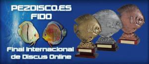 Concours de discus Online FIDO