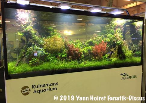 Aquarium plantes Aquaflora Ruinemans Vivarium 2018