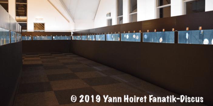 Discus show 2018 De Discusvrienden Vivarium