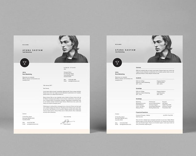InDesign Resume Template     Fancy Resumes indesign resume template