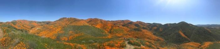 Walker Canyon panoramic