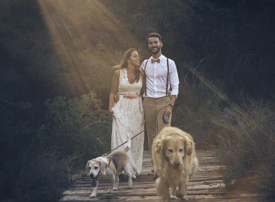 19 paseo con mascotas