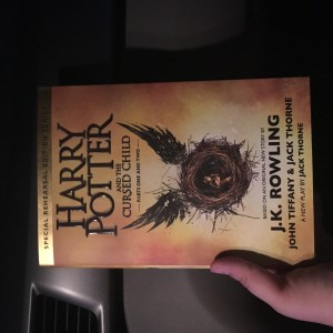 The book in hand!
