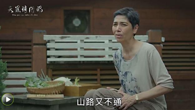 圖 / 翻攝自愛奇藝