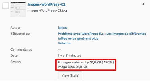 Images-WordPress-04