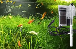 como limpiar filtro de acuario
