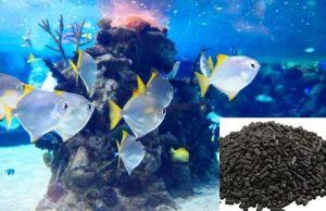 Necesitan carbón activo los acuarios marinos
