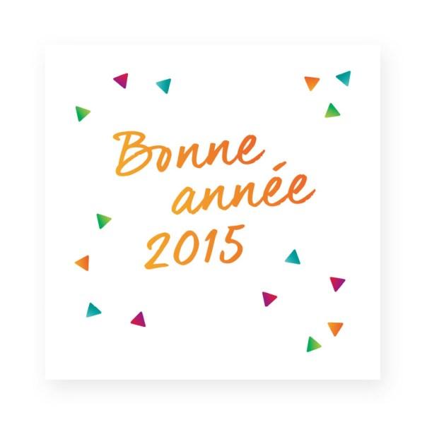 Vœux 2015 Action et Compétence page 1
