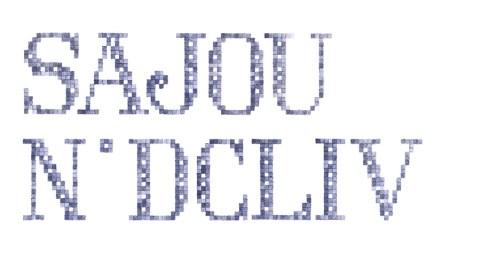Sajou Lettres brodées