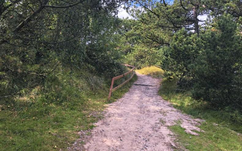 Aufgang zum Berg - mitten in der Natur