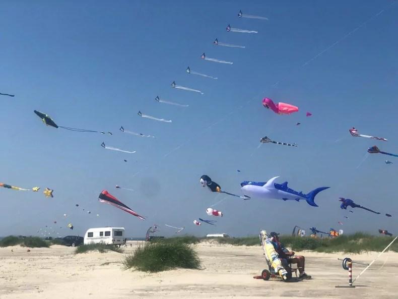 International Kite Fliers Meeting 2021