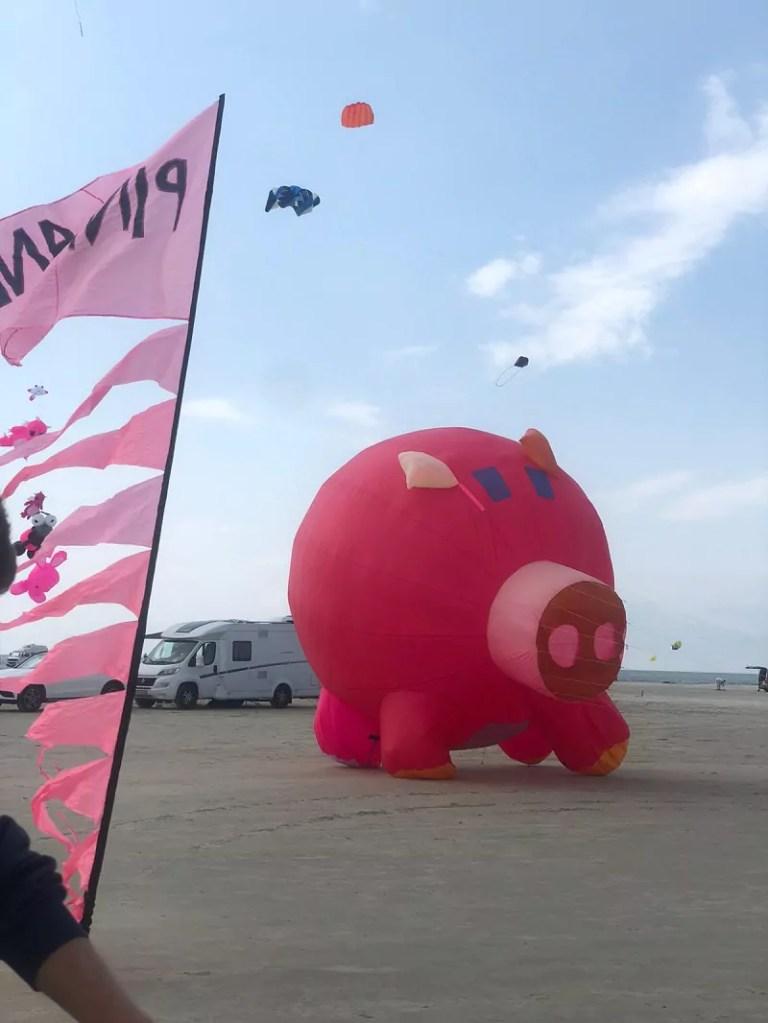 Pinkes Schwein am Strand