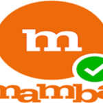 Mamba Online Dating Site