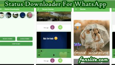 WhatsApp Status App Downloader
