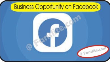 Facebook Business - Business Opportunity on Facebook - 5 Ways Facebook Craigslist Can Grow Your Business Online