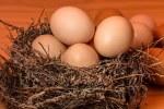 Uova in camicia