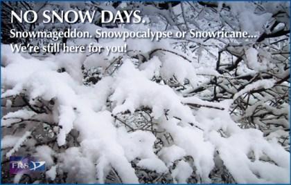 No Snow Days
