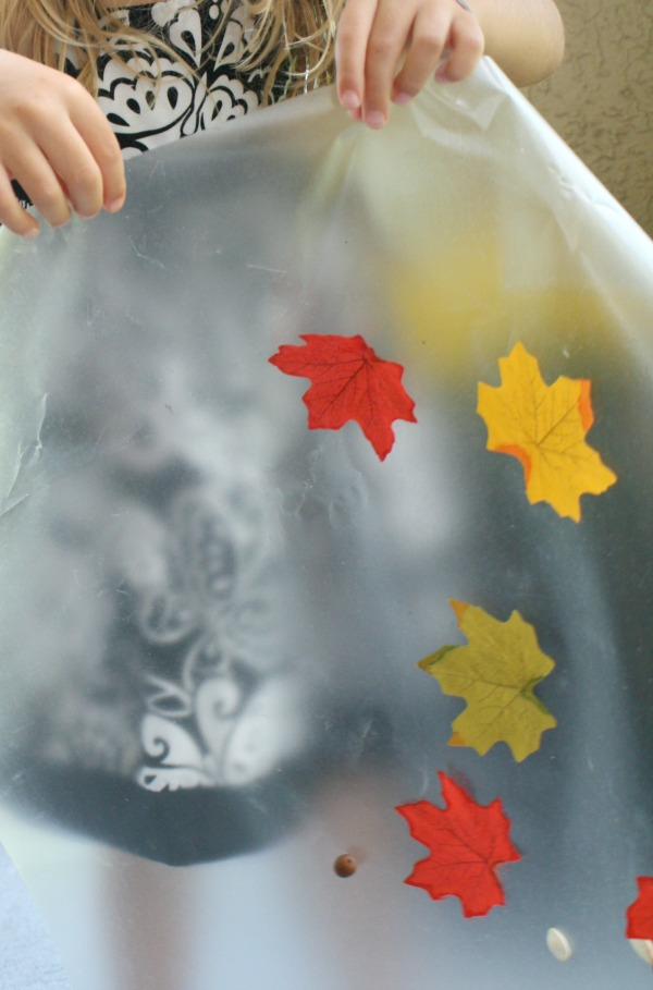 Shake-Fall Leaf Art and Science Activity