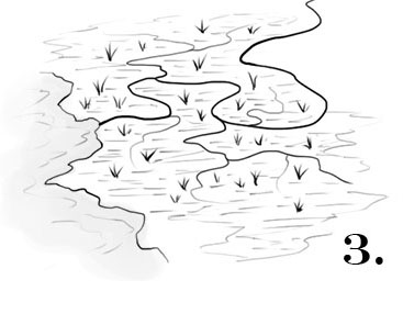 how to draw swamps fantastic maps