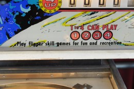 For fun and recreation, NOT gambling. An important distinction.