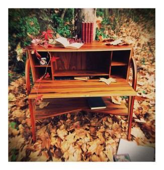 Cabinet Society / Writer