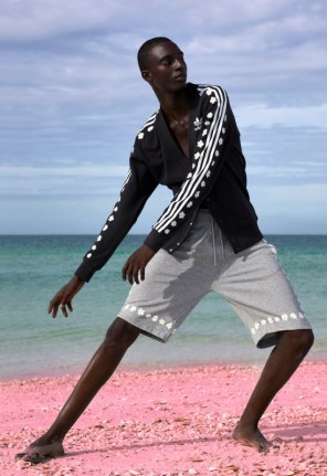 Pharrell x adidas Originals