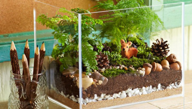 Ideas sorprendentes terrario únicos con la imagen de una decoración única terrario en el diseño de 634x360 15 obras maestras miniatura terrarios inspirarse Creativa De