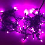 Christmas LED Lights Pink