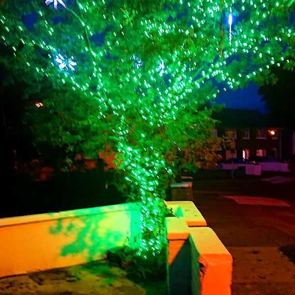 Christmas LED Lights Green