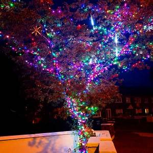 Christmas LED Tree Lights Multicoloured