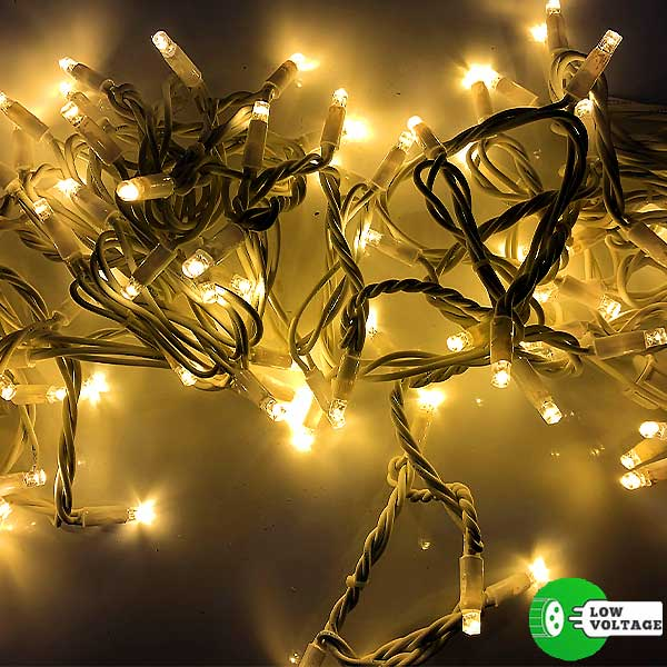 Low Voltage Christmas LED Lights