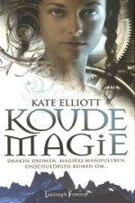 Koude magie Boek omslag