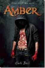 Amber Boek omslag