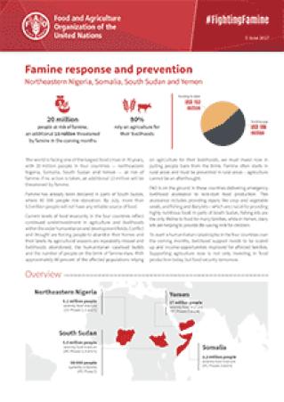 Famine response and prevention in Northeastern Nigeria, Somalia, South Sudan and Yemen