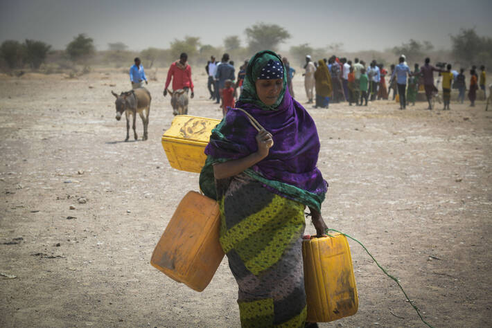 Photo: ©FAO/IFAD/WFP/Michael Tewe / FAO