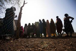 Photo: ©FAO/UNHCR Albert Gonzales Farran