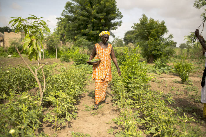 Photo: ©Benedicte Kurzen/NOOR for FAO / FAO