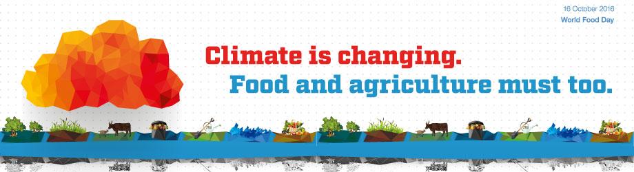 Poster de la campaña - FAO