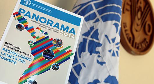 El Panorama 2014 reporta una visión positiva de los resultados de la lucha contra el hambre en la región a un año del cumplimiento de la fecha de los ODM, además de identificar los factores claves que explican estos importantes avances. Sin embargo, también es enfático en presentar desafíos y brechas pendientes que deben ser abordadas por los países de la región para así consolidar los avances obtenidos y erradicar de forma definitiva el hambre en el largo plazo.
