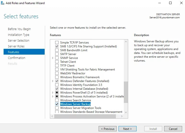 Choose Windows Server Backup