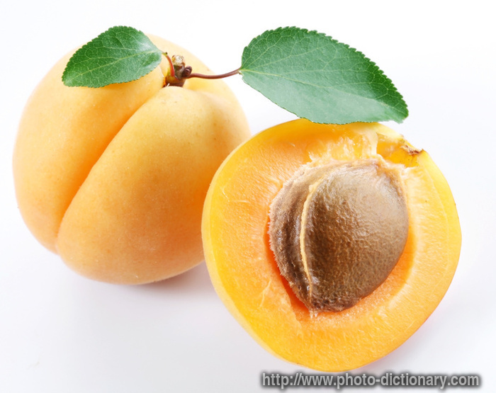 https://i2.wp.com/www.faqs.org/photo-dict/photofiles/list/447/820apricot.jpg