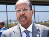 وزير الخارجية الجيبوتي، محمود علي يوسف (الاناضول)