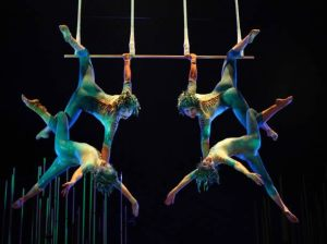 Cirque du Soleil , Varekai , Teleticket de Wong y Metro